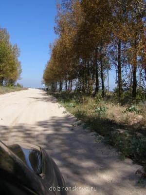 Дорога на косу - P9120272.jpg