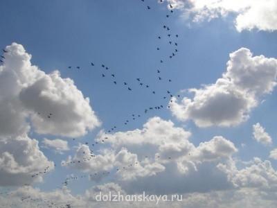 Давайте делиться фотографиями Должанки - P9100093.JPG