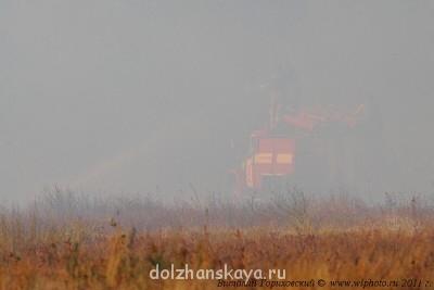 Заповедный сосновый лес - IMG_7022.JPG