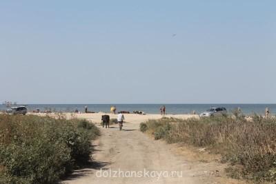Отдых в Должанской - ужас - Пляж2.jpg