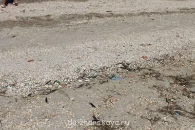 Отдых в Должанской - ужас - Грязный берег1.jpg